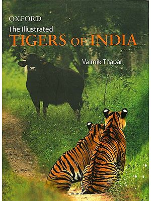 The Illustrated Tigers of India
