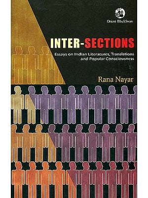 Inter-Sections (Essays on Indian Literature, Translations and Popular Consciousness)