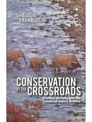 Conservation At The Crossroads (Science, Society, and the Future of India's Wildlife)