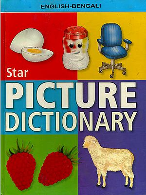 Star Picture Dictionary