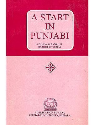 A Start in Punjabi