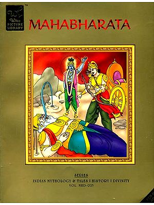 The Mahabharata (Comic Book)