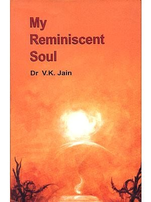 My Reminiscent Soul