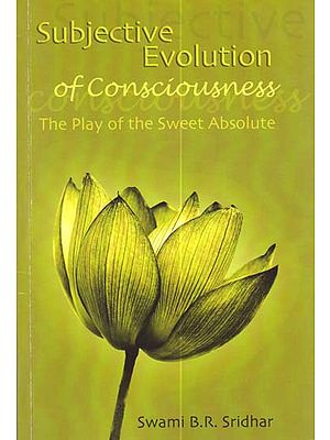 Subjective Evolution of Consciousness (The Play of the Sweet Absolute)