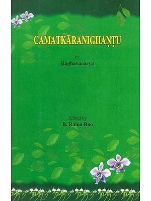 Camatkara Nighantu