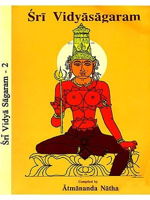 Sri Vidyasagaram (Set of 2 Volumes)