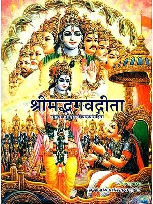 श्रीमद्भगवद्गीता: Gita with the Commentary of Madhusudan Saraswati