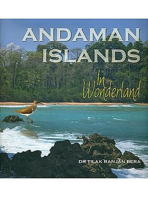 Andaman Islands in Wonderland