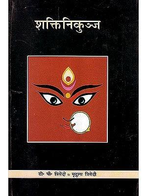 शक्ति निकुञ्ज: Shakti Nikunj (Hindi Only)