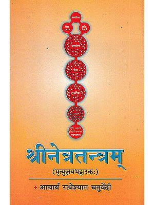 Srinetratantram (Mrtyunjayabhattarakah)