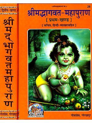 श्रीमदभागवत महापुराण Shrimad Bhagavata Purana (Set of 2 Volumes)