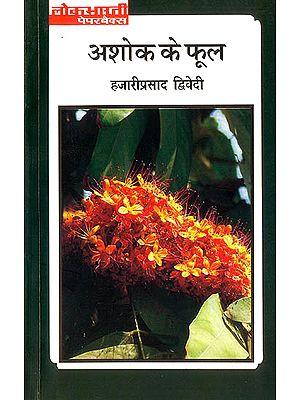 अशोक के फूल (Flowers of the Ashoka Tree)