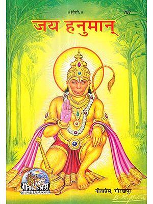 जय हनुमान्: Jai Hanuman (Picture Book)