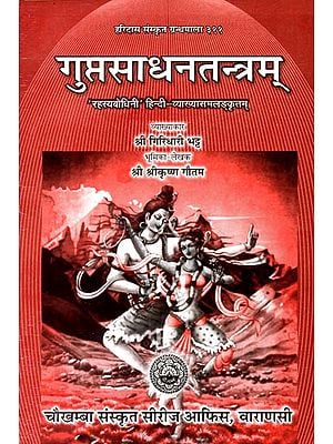 गुप्त साधन तन्त्रम्: Gupta Sadhana Tantram