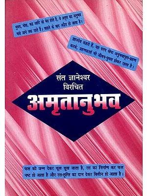 अमृतानुभव (संस्कृत एवं हिन्दी अनुवाद): Amritanubav of Jnaneshvara