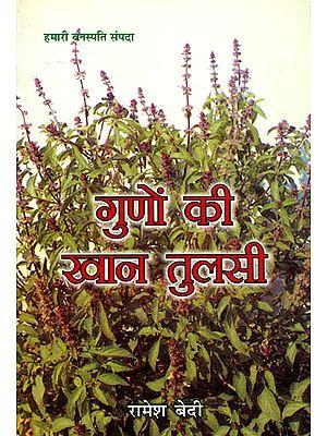 गुणों की खान तुलसी: Tulsi - A Treasure of Qualities