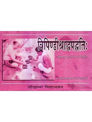 त्रिपिण्डीश्राध्दपध्दति: Tipindi Shraddha Paddhati