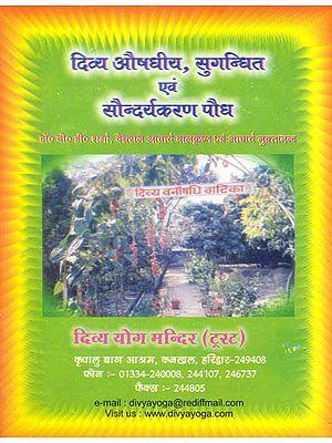 दिव्य औषधीय, सुगन्धित एवं सौन्दर्यकरण पौध: Divine Herbs, Aromatic and Beautifying Plants