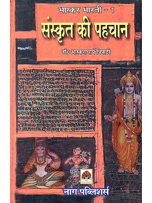संस्कृत की पहचान: Essays on Sanskrit Literature