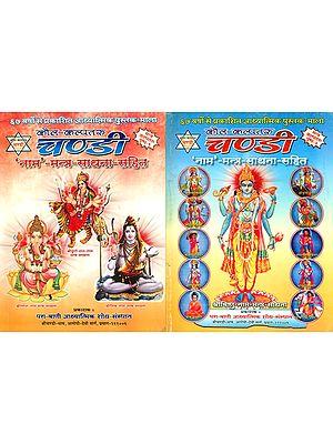 कौल कल्पतरु चण्डी 'नाम' - मन्त्र साधना सहित: Kaula Kalpataru Chandi  (Set of 2 Volumes)