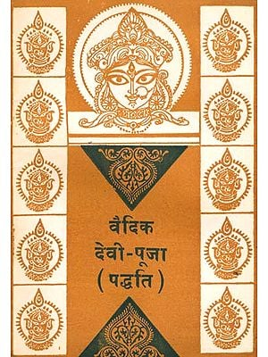वैदिक देवी पूजा (पद्धति) - Vedic Method of Worshipping Goddess