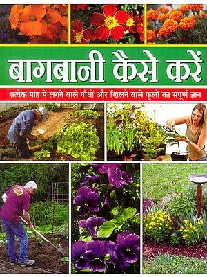बागबानी कैसे करें: How to Do Gardening