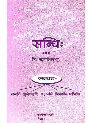 सन्धि: Sandhi (Sanskrit Only)