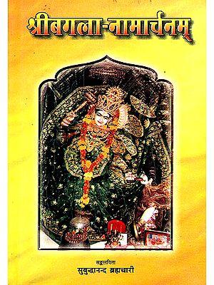 श्रीबगला नामार्चनम्: Worshipping Goddess Bagalamukhi Through Her Divine Names