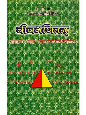 बीजगणितम्: Bija Ganitam (Geometry)