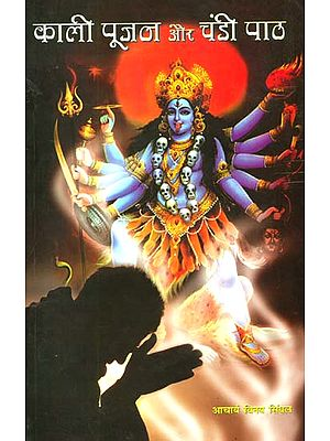 काली पूजन और चंडी पाठ: Kali Puja and Chandi Path