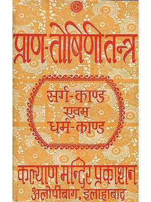 प्राण तोषिणि तन्त्र (सर्ग काण्ड एवं धर्म काण्ड): Prana Toshini Tantra (An Old Book)