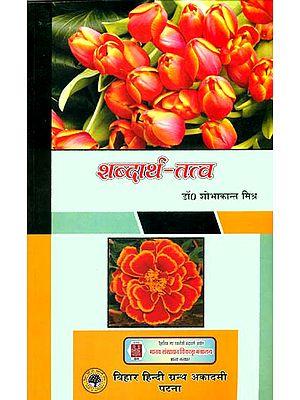 शब्दार्थ तत्व: The Essence of Shabdartha