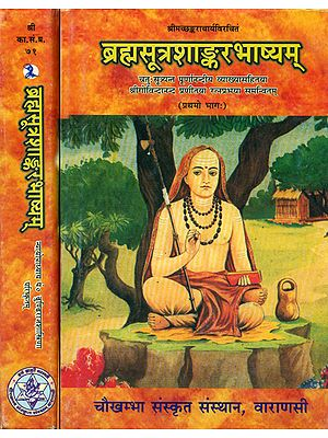 ब्रह्मसूत्रशाङ्करभाष्यम्: Brahma Sutra Shankar Bhashya with Ratna Prabha and Purnanandi (Set of 2 Volumes)