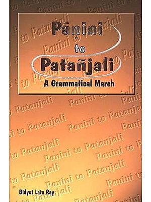 Panini to Patanjali: A Grammatical March