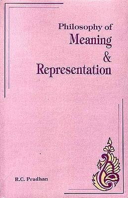 Philosophy of Meaning and Representation
