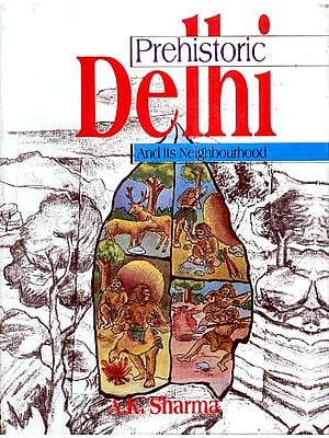 Prehistoric Delhi And Its Neighbourhood