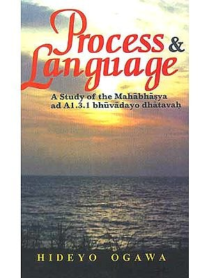 Process and Language A Study of the Mahabhasya ad A1.3.1 bhuvadayo dhatavah