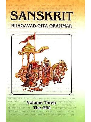 Sanskrit Bhagavad-Gita Grammar (Volume Three The Gita)