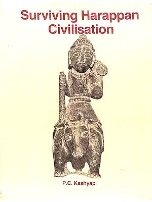 Surviving Harappan Civilisation