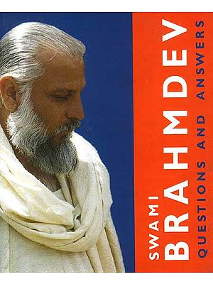 Swami Brahmdav (Questions and Answers)