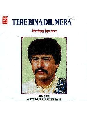 Tere Bina Dil Mera <br>(Audio CD)