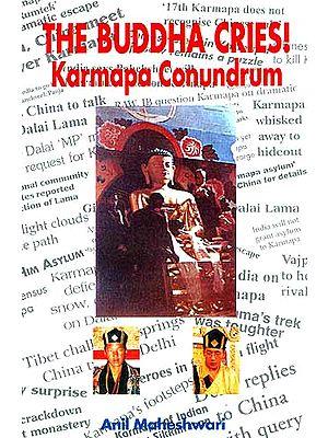 The Buddha Cries! Karmapa Conundrum