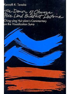 The Dawn of Chinese Pure Land Buddhist Doctrine: Ching-ying Hui-yuan's Commentary on the Visualization Sutra