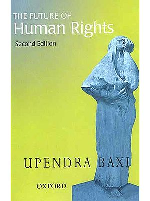 The Future of Human Rights: Second Edition