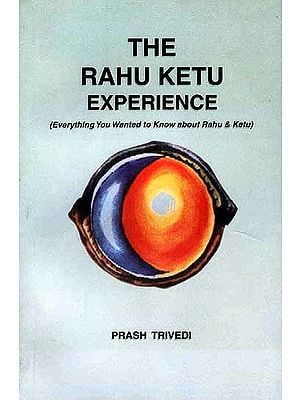 The Rahu Ketu Experience: (Everything You wanted to Know about Rahu and Ketu)