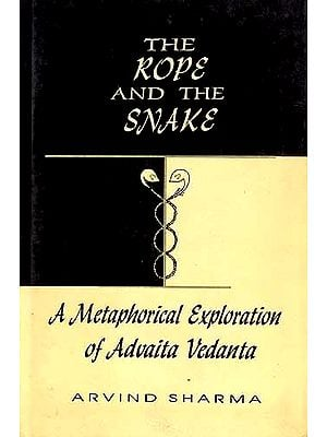 The Rope And The Snake: A Metaphorical Exploration of Advaita 