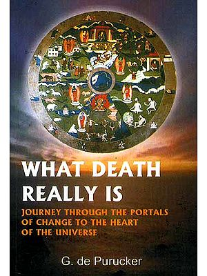 What Death Really Is Questions We All Ask