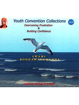 Youth Convention Collections Overcoming Frustration & Building Confidence<br>(Set of 2 Audio CDs)