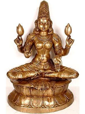 Large Size Padmahasta Lakshmi