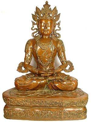 Large Size Pritzker Vairochana Buddha